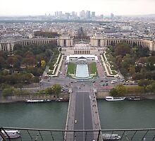 View from the Eiffel Tower by CadburyKeepsake