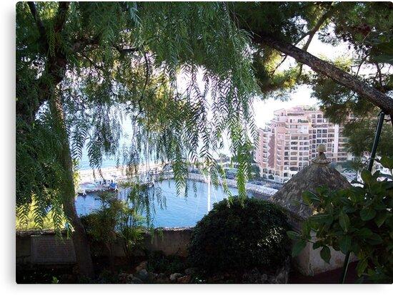 View of Monaco Through the Brush by CadburyKeepsake