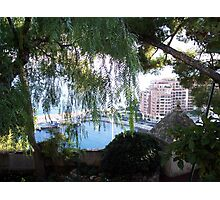 View of Monaco Through the Brush Photographic Print