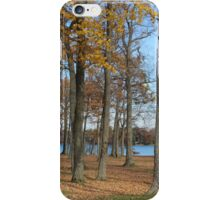 Beauty of Fall iPhone Case/Skin