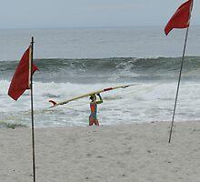 Surfer Girl by Marijane  Moyer