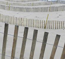 Coastal Lines by Marijane  Moyer