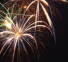 Fireworks by lbballard