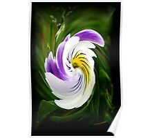 Pansy with a Twist Poster