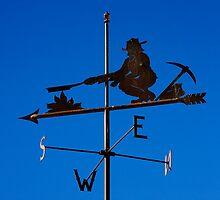 Weathervane by Alex Preiss