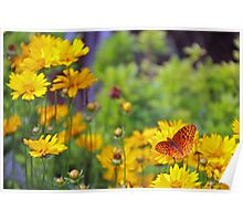 Butterfly in yellow Poster