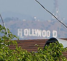 Hollywood through the Trees by FangFeatures
