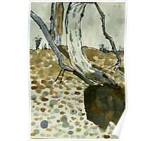 dry creek scape Poster