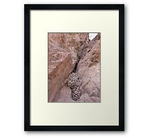 Rocks Caught in a Crevass Framed Print
