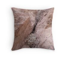 Rocks Caught in a Crevass Throw Pillow