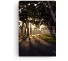 Early morning ride in the park Canvas Print