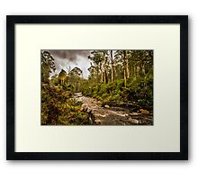 On the way to Mt Buller Framed Print