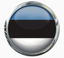 Estonia Flag	 by 3Dflags