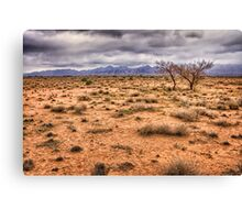 Flinders Ranges pastoral land Canvas Print