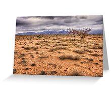 Flinders Ranges pastoral land Greeting Card