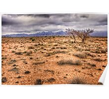 Flinders Ranges pastoral land Poster