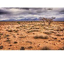 Flinders Ranges pastoral land Photographic Print
