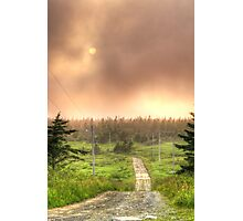 The Road to Cranberry Head Photographic Print
