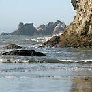 Oregon Coast by Dave Davis