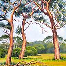 Trees near Margaret River, WA by Gregory Pastoll