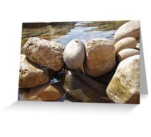 Watered Rocks Greeting Card