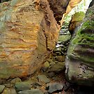 Cuyahoga National Valley, The Ledges 3 by Debbie  Maglothin