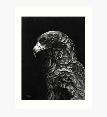 Bateluer Eagle in Ballpoint Pen Art Print