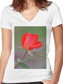 Valentine wish Women's Fitted V-Neck T-Shirt