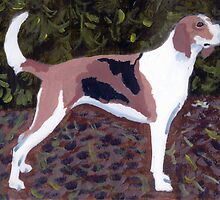 American Foxhound Dog by Oldetimemercan