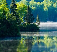 Mont Tremblant National Park-Canada by MIRCEA COSTINA