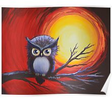 Sunset Vortex with Owl Poster
