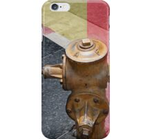 sunset fire hydrant iPhone Case/Skin