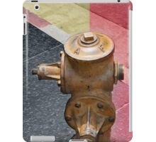sunset fire hydrant iPad Case/Skin