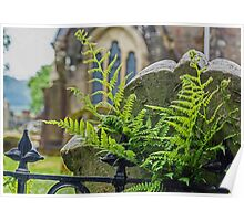 Gravestone with Fern Poster