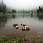 Sheep Lake - Mt. Rainier N.P. by Mark Heller