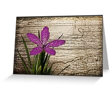 Textured wood and purple flower Greeting Card