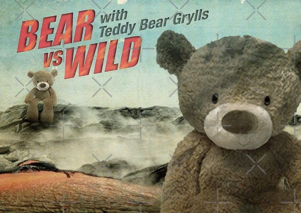 Teddy Bear Grylls by Vin  Zzep