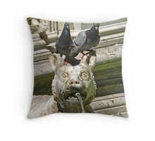 Fountain detail - Siena, Italy Throw Pillow