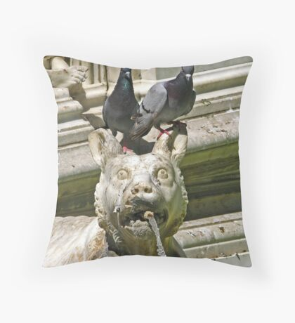 Fountain detail - Siena, Italy Throw Pillow