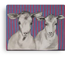 naughty goats Canvas Print