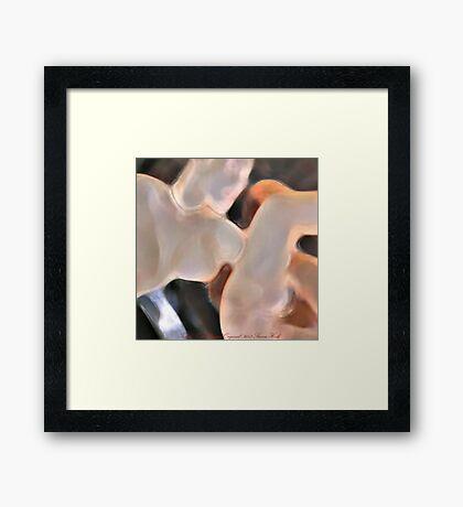 touch Framed Print