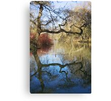 Ye Olde Tree Canvas Print