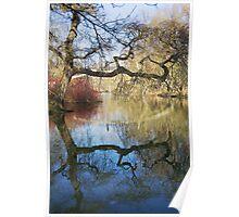 Ye Olde Tree Poster