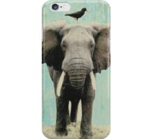 friends for life - elephant and a black bird iPhone Case/Skin