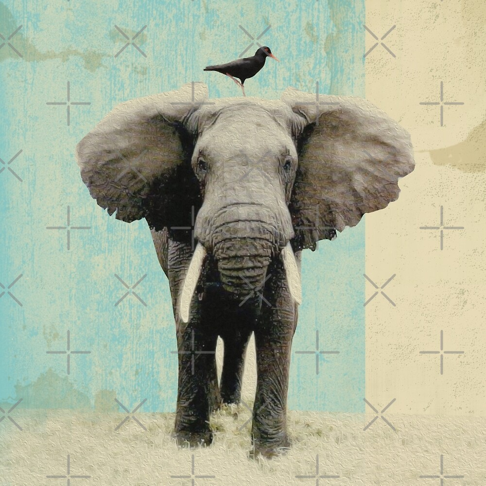 friends for life - elephant and a black bird by Vin  Zzep
