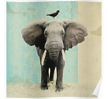 friends for life - elephant and a black bird Poster