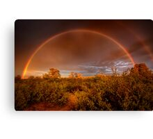 Rainbow Brush Canvas Print
