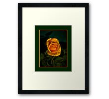 The Rose Today Framed Print