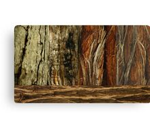 Trees inThe National Park Canvas Print