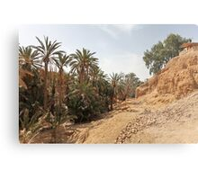 oasis of the desert Metal Print